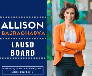 Allison Bajracharya Display Ad