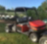Cushman Truckster Gas