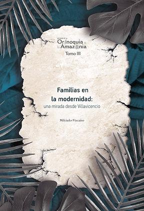 Familias en la modernidad: una mirada desde Villavicencio - Orinoquia Tomo 3