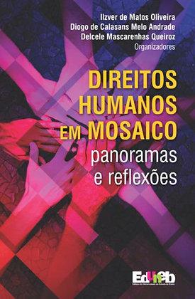 Direitos Humanos Em Mosaico Panoramas e Reflexões