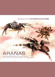 Arañas. Las maestras de la seda