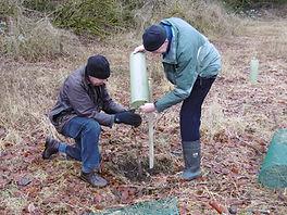 FoC tree planting 3.JPG