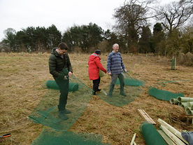FoC tree planting 2.JPG