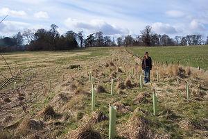 FoC tree planting 1.jpg