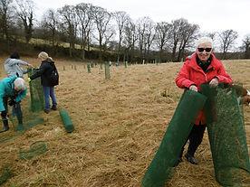 FoC tree planting 5.JPG
