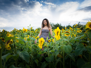 Sunflower Field of hope
