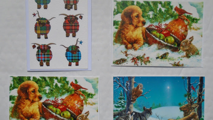 Animals 02 - Pack of 4