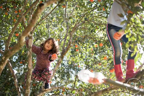 Cora 2 anos - anga fotografia - fotografo porto alegre - fotografa porto alegre-0024.jpg