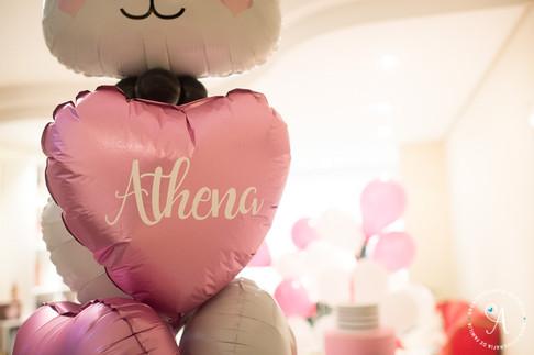 Athena 1 ano-0032.jpg
