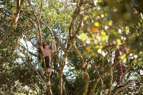 Cora 2 anos - anga fotografia - fotografo porto alegre - fotografa porto alegre-0022.jpg