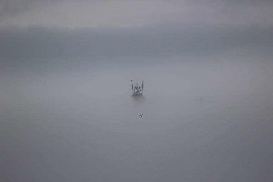 Nothing Like a Foggy Day.jpeg