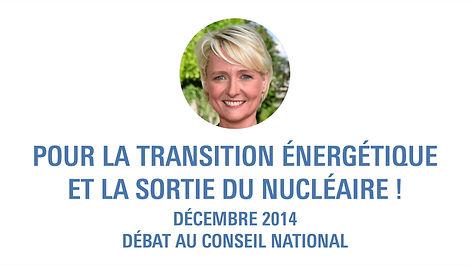 Isabelle Moret, Conseil national, nucléaire, énergie, transition