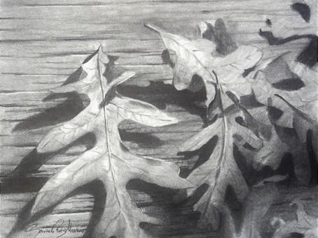 """""""Oak Leaves"""" Graphite Pencil Demo"""
