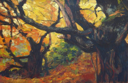 Bosque de castanos en las Medulas.jpg