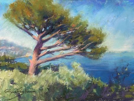 Pastel Demo: Pine tree