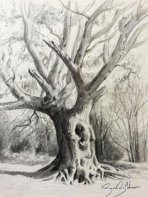 Project 9 - Tree - Step (3).jpg