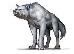 whitewolf_P03