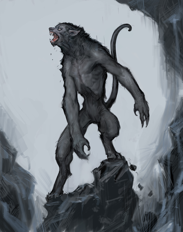 wolf_3_jun_1