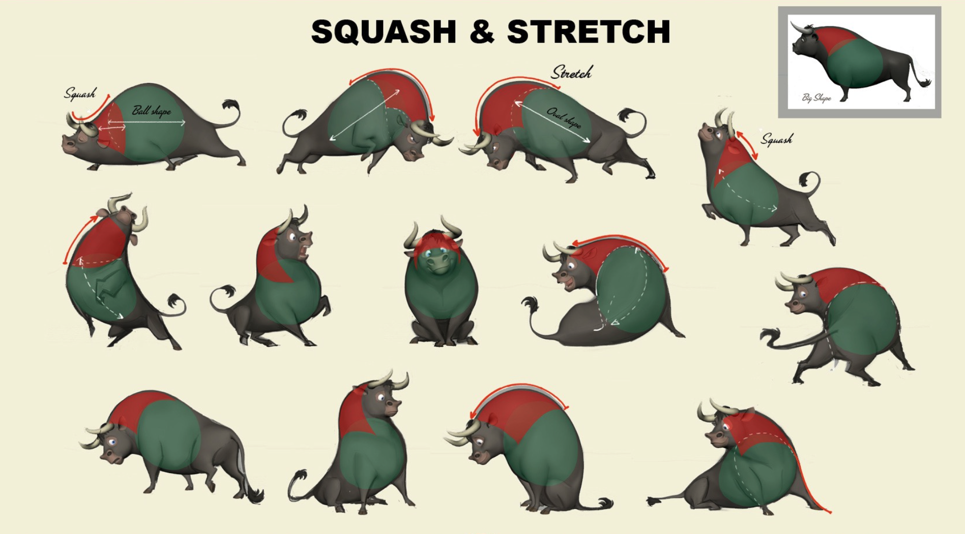 Ferdiand_squash_stretch