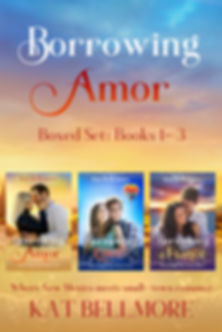 Borrowing Amor Flat Boxset cover_edited-