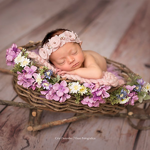 Ensaio Newborn da Cecília