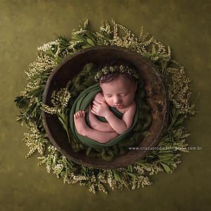 Ensaio Newborn da Olívia