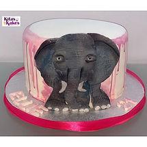 A hand sculpted elephant cake🐘🐘🦛 , I