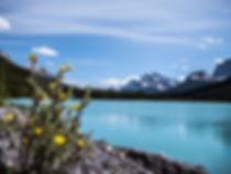 photographie d'un lac bleu au milieu de montagnes au Canada avec une fleur