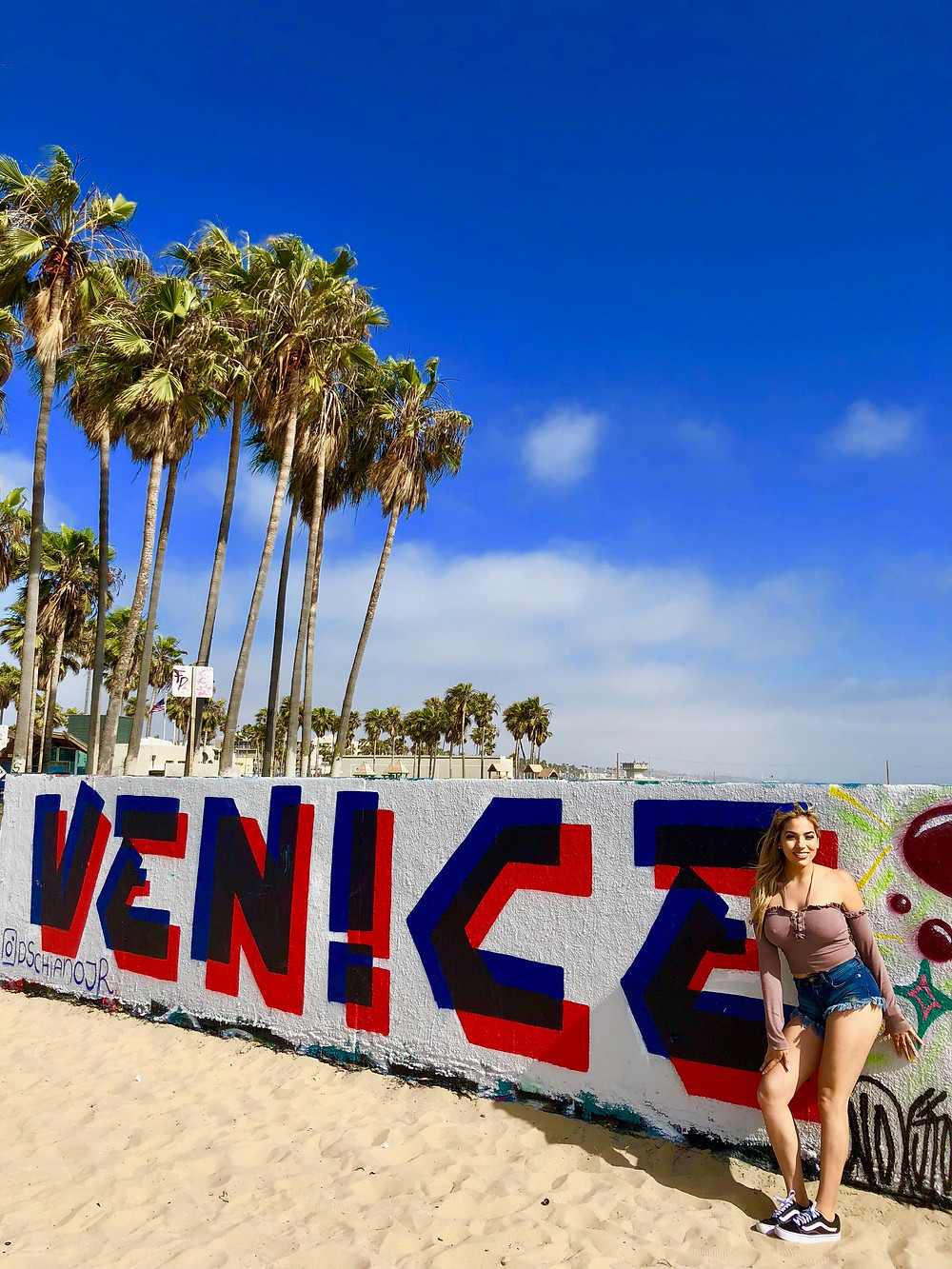 Painted wall that says Venice, palm trees & Mel