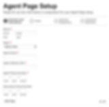 Agent Profile Page.png