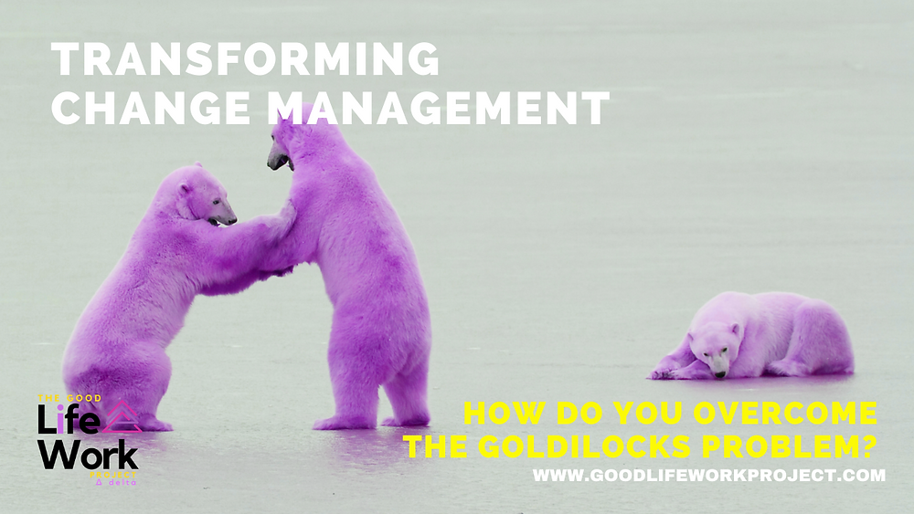 Change Management AND the Goldilocks principle
