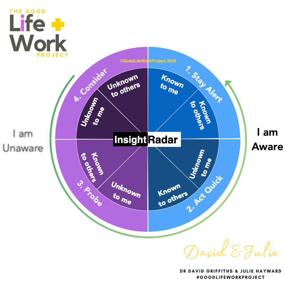 Johari Window AND Insight Radar