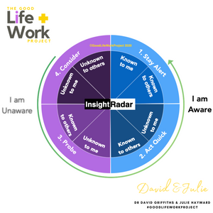 Johari Window AND Insight Radar