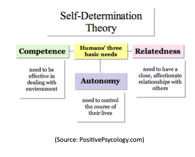 Self determination theory jpeg