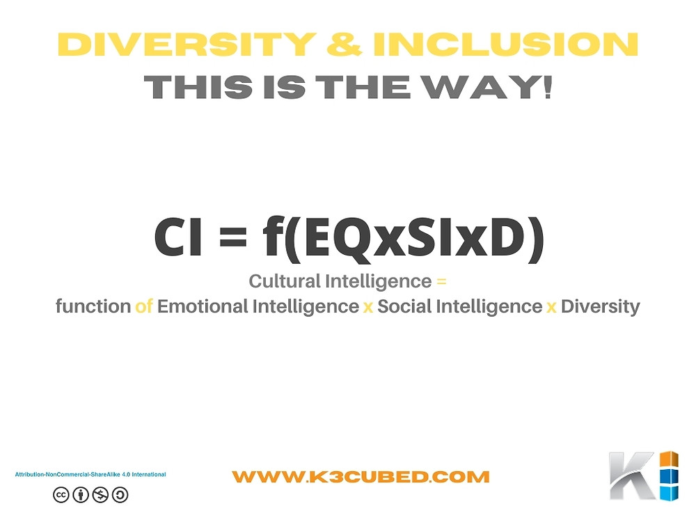 Diversity and Inclusion Cultural Intelligence