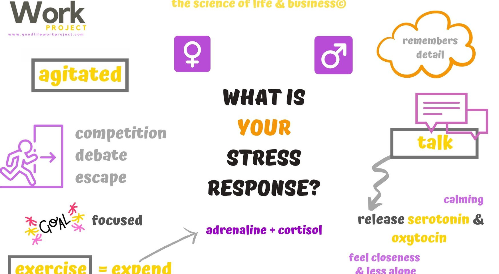 What is your stress response?