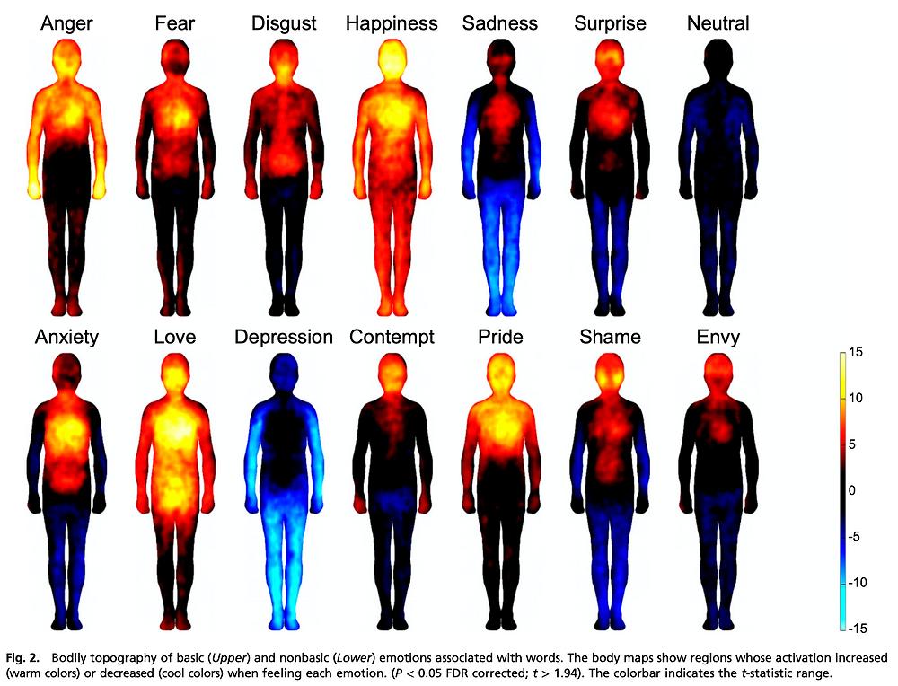 Nummenmaa et al. Bodily Map of Emotions