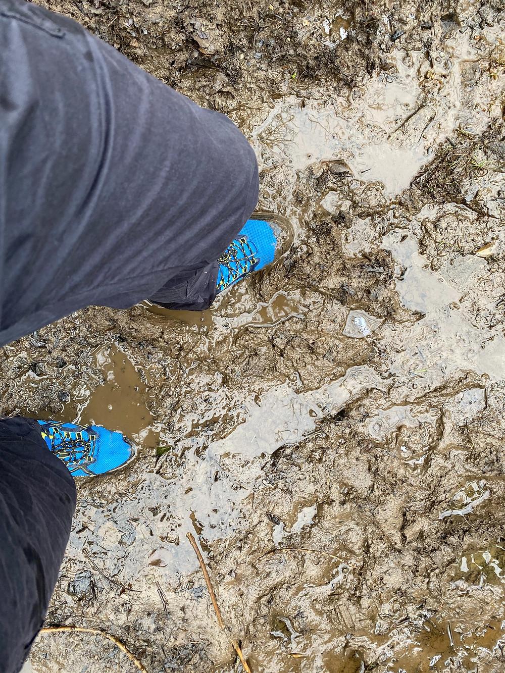 Muddy Good Walk Pembrokeshire