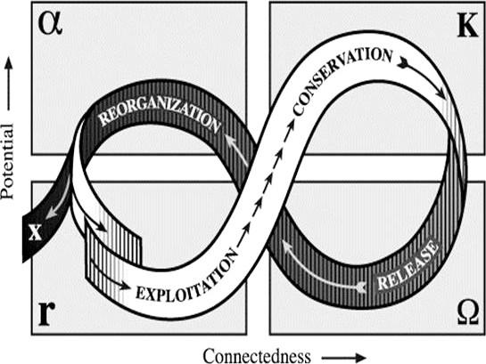 CS Holling Adaptive Cycle