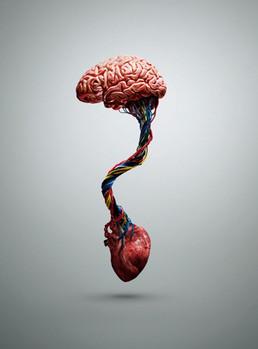 Mind vs Heart