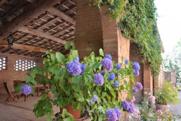 40. Al Fresco Dining, View 2