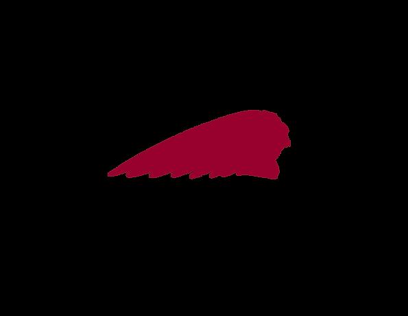 WEB-RGB_Indian_Headdress_Red.png