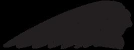 Polaris_indian_logos_headdress-black_04_