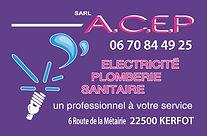 CARTES DE VISITE ACEP.jpg
