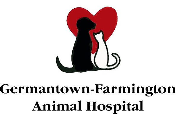 Licensed Veterinary Technician or Experienced Veterinary Assistant
