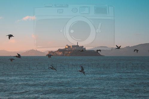 "10"" x 8"" Alcatraz Framed Print"