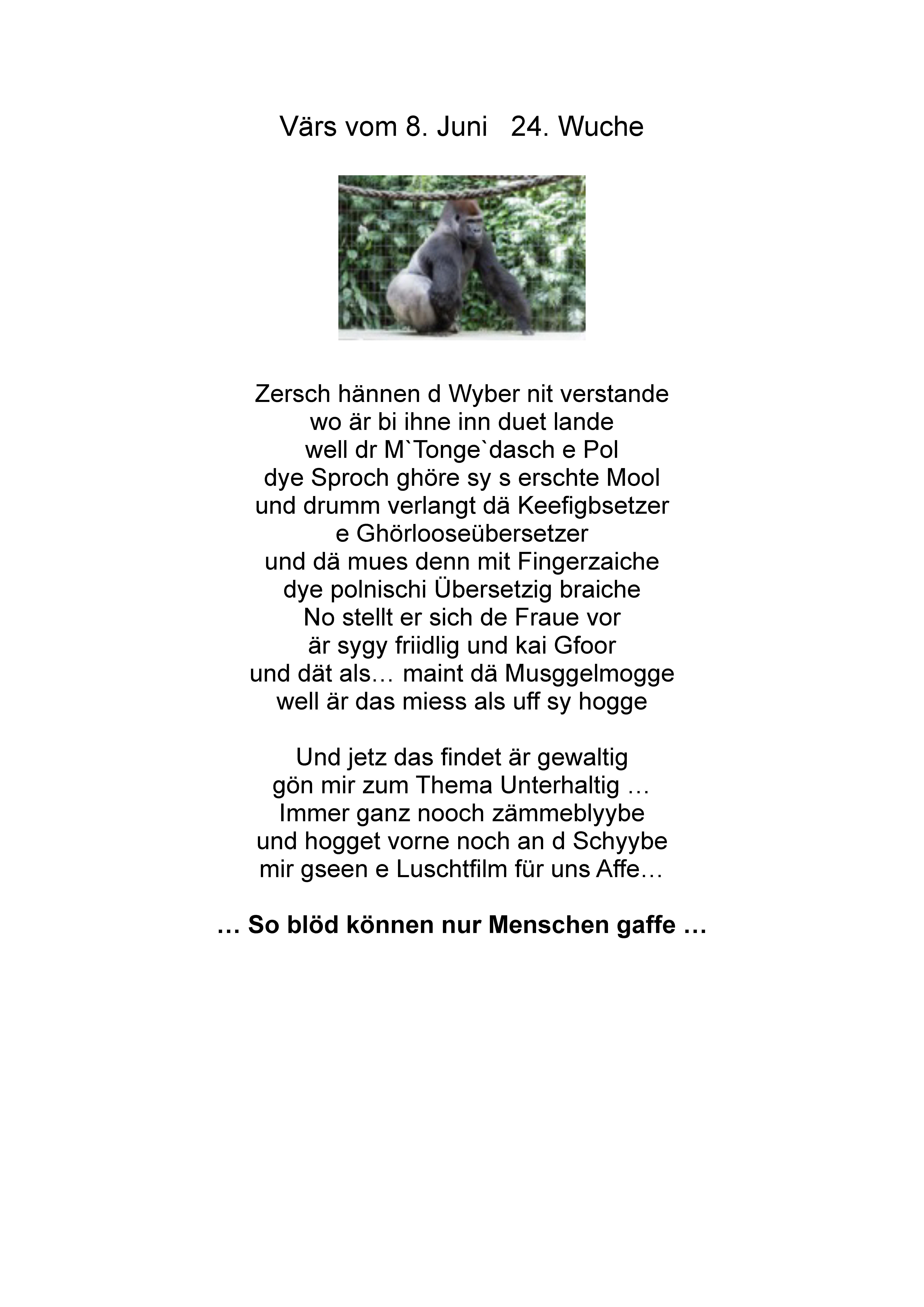 wuchevaers 24