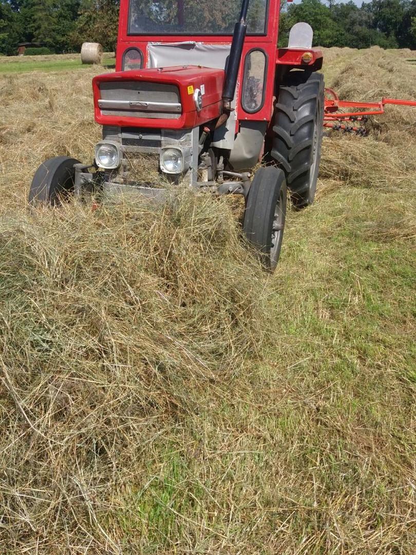 Dittingen Traktor