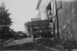 1940's hay being loaded to barn.jpg