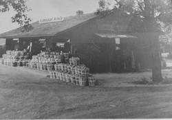 Larchmont Farm.jpg